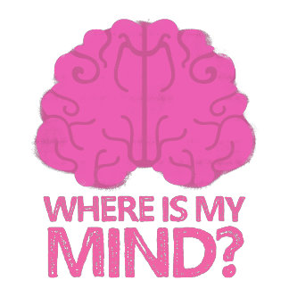 where is my mind? with pink brain