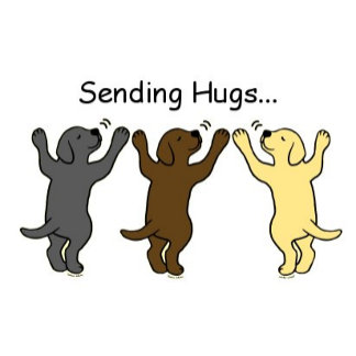 Labrador Puppies Group Hug