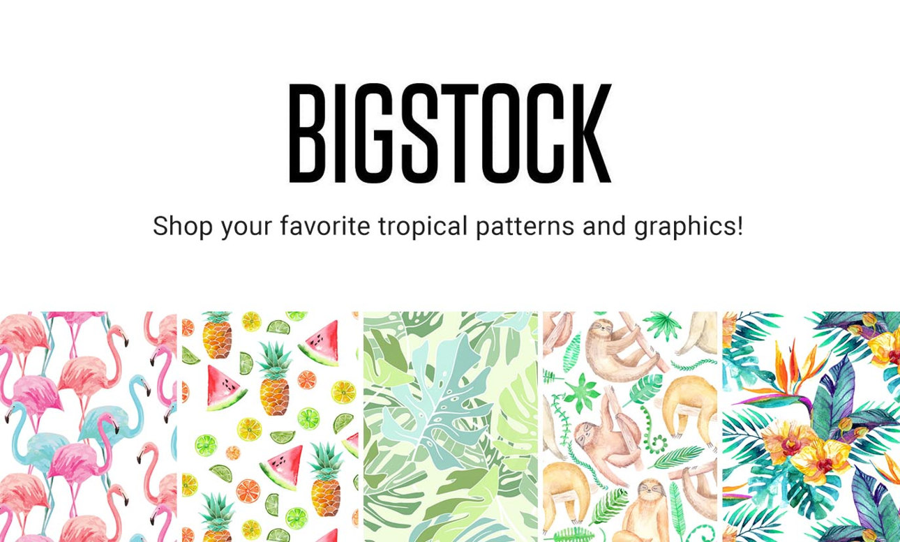 Shop your favorite Bigstock tropical patterns and graphics!