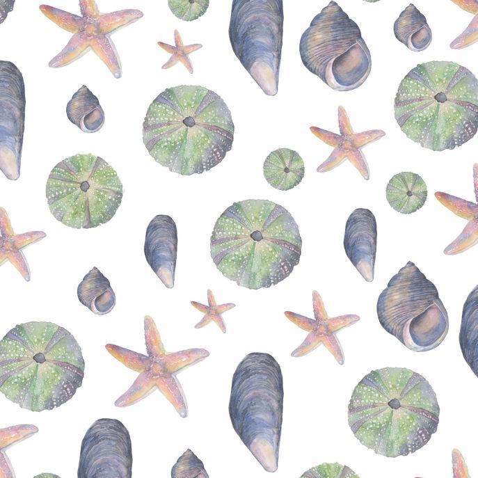 Watercolor Seashell Collection Pillow