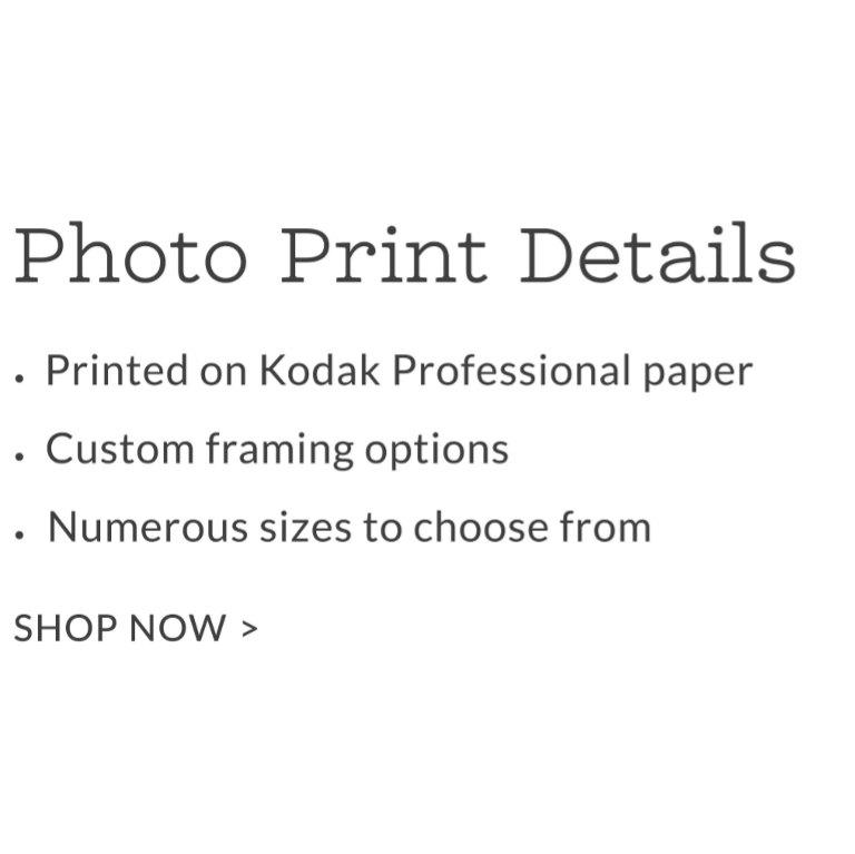 Custom written papers art