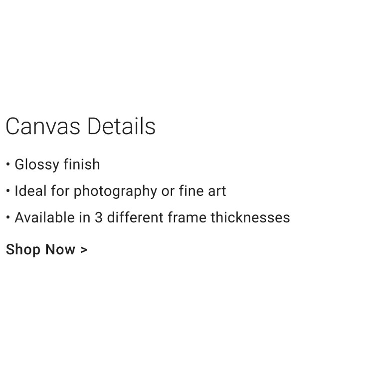 Canvas Details - Glossy Finish. Ideal for photography or fine art.