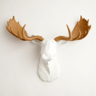 White Faux Moose Head with Tan Antlers