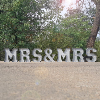 """9"""" tall - MRS & MRS - Metal Marquee Sign Lights"""