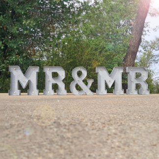 """9"""" tall - MR & MRS - Metal Marquee Sign Lights"""