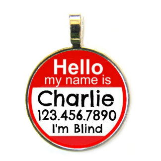 """Round """"Hello"""" Personalized Pet Name Tag ID"""
