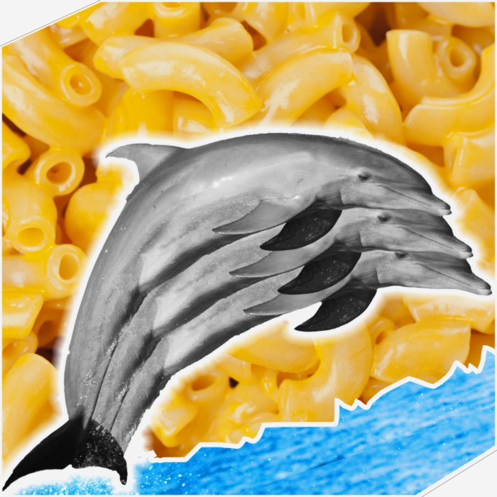 DOLPHIN MACARONI AND CHEESE