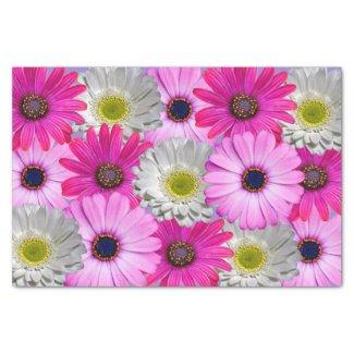 "Daisy Bouquet 10"" X 15"" Tissue Paper"
