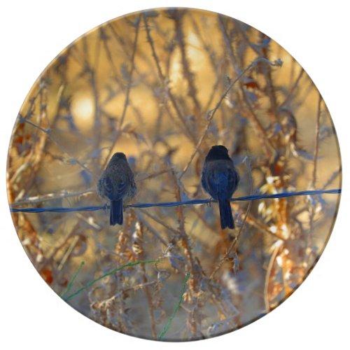 Romantic Sparrow Couple Porcelain Plate