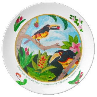 Collared Aracari (toucan), Belize, Central America Dinner Plate