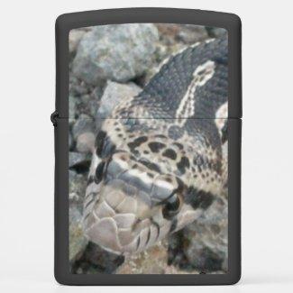 Bull snake (Pituophis catenifer sayi) Zippo Lighter