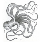 Nautical steampunk octopus vintage book drawing wristlet