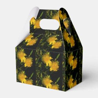 Sunburst Flowers Party Favor Box