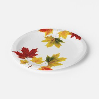 Colorful vintage maple leaves paper plate
