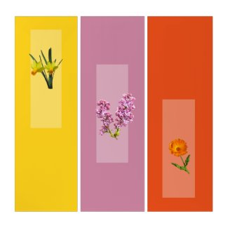Triptych - Botanical Images