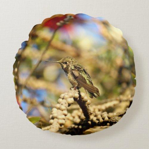 Female Anna's Hummingbird Round Pillow