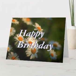 Daisy Day Design - Happy Birthday Card