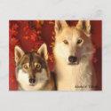 Alpha Wolves Fall Postcards