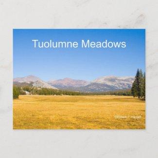 Tuolumne Meadows Yosemite California Products Postcard