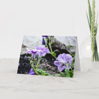 Below Purple Flowers Photography Blank Card