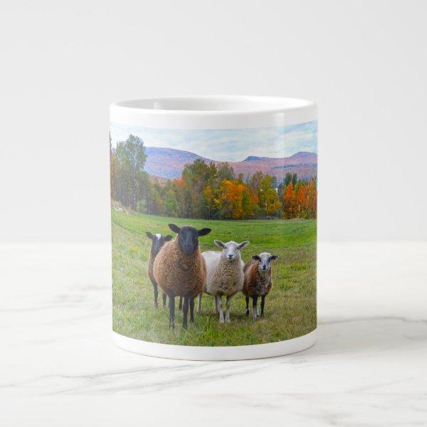 Vermont Sheep in Autumn Giant Coffee Mug