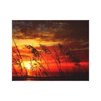 Red Sunrise Through Sea Oats Canvas Print