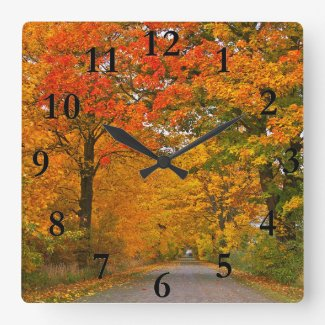 Autumn colorful trees square wall clock