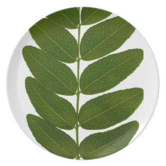 autumn leaves plate