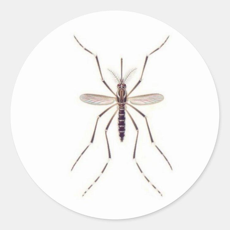 Mosquito  POWER Classic Round Sticker