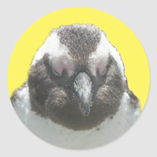 South African Penguin Face Sticker
