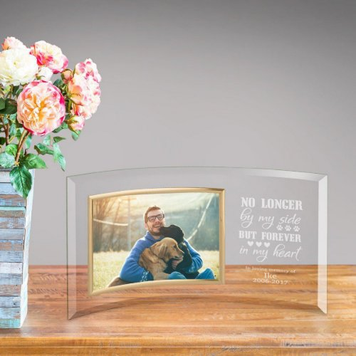 Engraved Pet Memorial Curved Glass Picture Frame