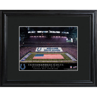 Indianapolis Colts Stadium Print w/Wood Frame