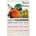 Calendar 2017 Parrot Birdies Year & Month