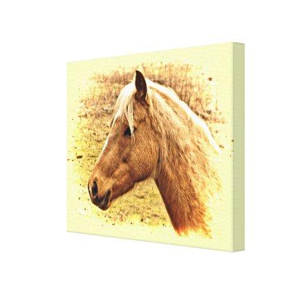 Golden Brown Horse in Sun Animal Canvas Print