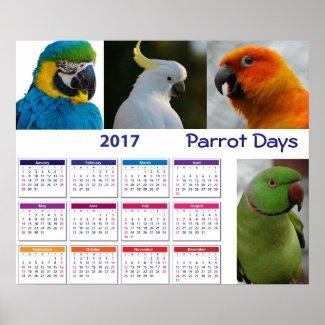 "Parrot Calender 2017 on Poster 24"" x 20"" (Matte)"