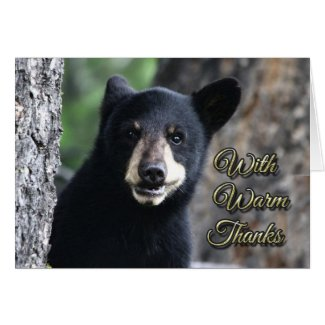 Smiling Bear Cub Thank You Note Cards