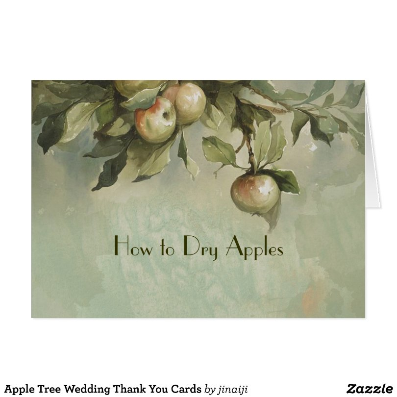 Apple Tree  Thank You Cards
