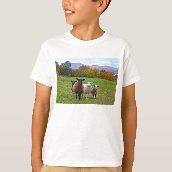 Vermont Sheep in Autumn T-Shirt