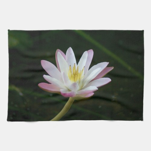 Pink Water Lily Flower Kitchen Towels