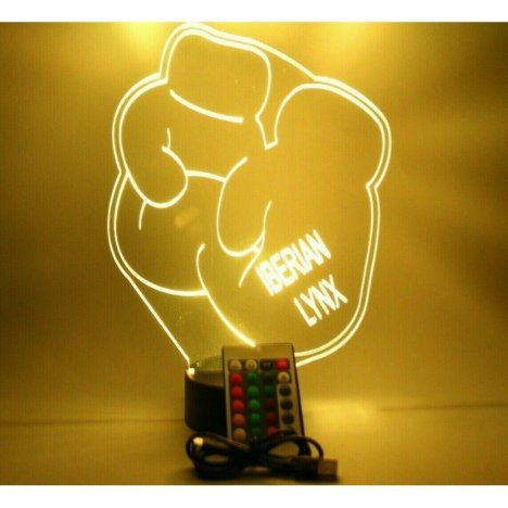 Boxing Gloves Night Light Up Lamp LED Personalized