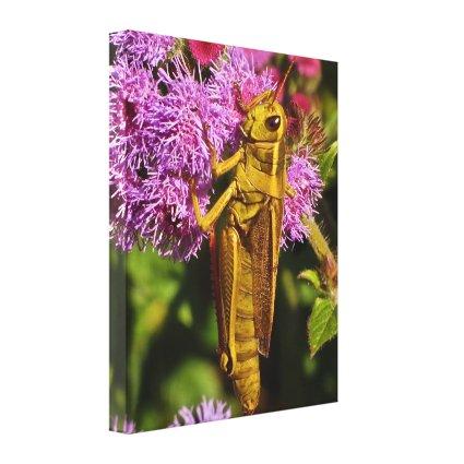 Grasshopper on Ageratum Canvas Print