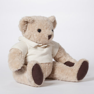 Personalized Teddy Bear with Message Shirt
