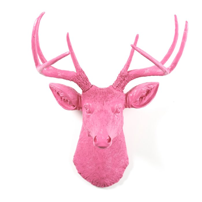 Pink wall d cor stag deer head zazzle - Decorative stags head ...