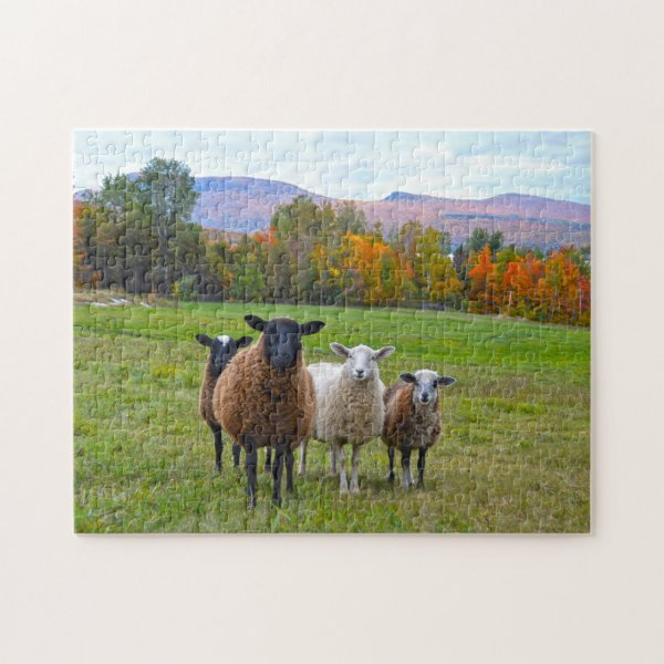 Vermont Sheep in Autumn Jigsaw Puzzle