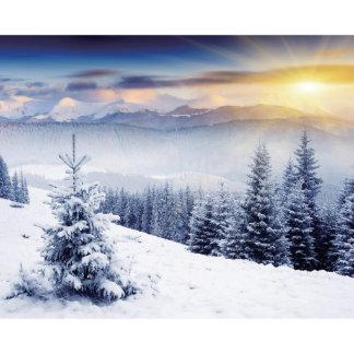 Custom Sized Window Film Glass Snowy Mountain