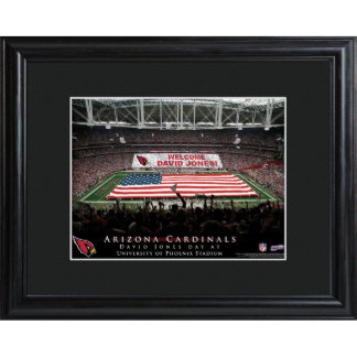 Arizona Cardinals Field Stadium Print w/Wood Frame