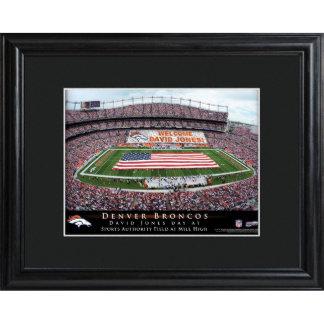 Denver Broncos Field Stadium Print w/Wood Frame