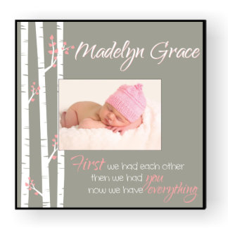 Personalized Baby Girl 12x12 Picture Frame