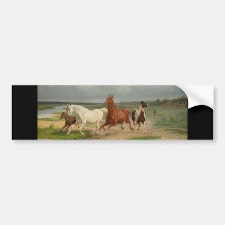 Svenska: Flyende hästar Bumper Sticker