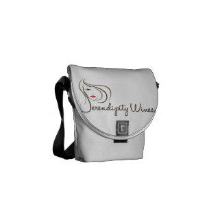 SW Mini Messenger Bag